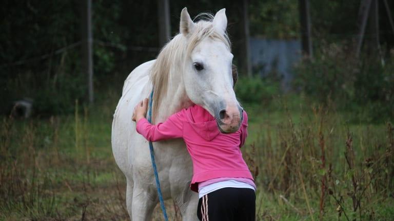 O convívio com animais pode ajudar na sociabilidade de crianças autistas.