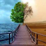 Familiares e a depressão: havendo qualquer chance de sair dessa sozinho, ninguém não estaria nessas condições