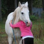 Benefícios do convívio com animais